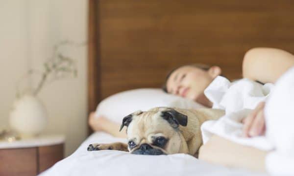 UITGERUST JE BED UIT: 3 TIPS VOOR EEN GOEDE NACHTRUST