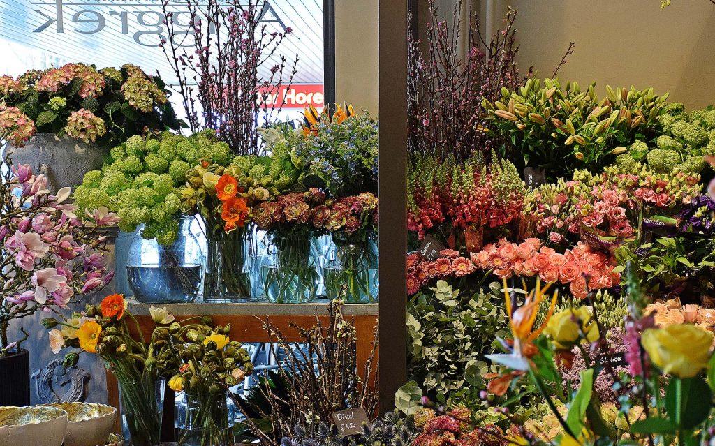 anggrek-amsterdam-verse-bloemen-webshop