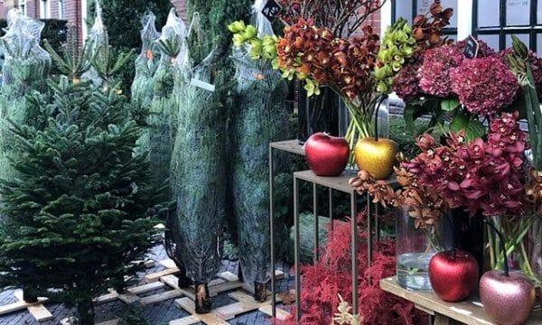 Roelof Hartstraat kerstbomen