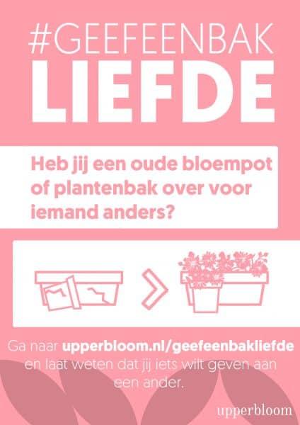 Upperbloom