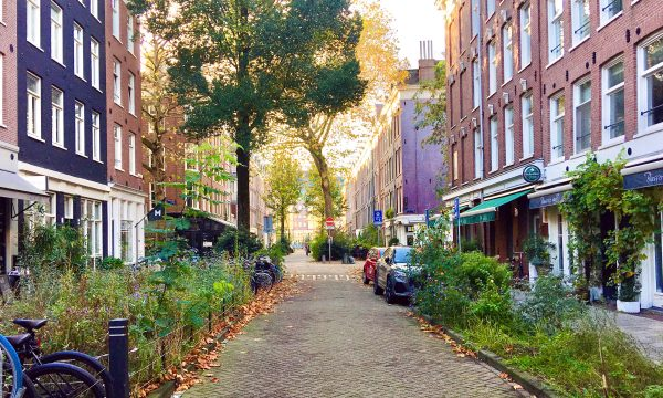 GET TO KNOW: SAENREDAMSTRAAT